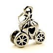 cinderellas carriage wedding cake charms